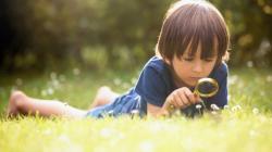 Thử thách nuôi Kun: Bộ sách giúp bé háo hức cùng thiên nhiên